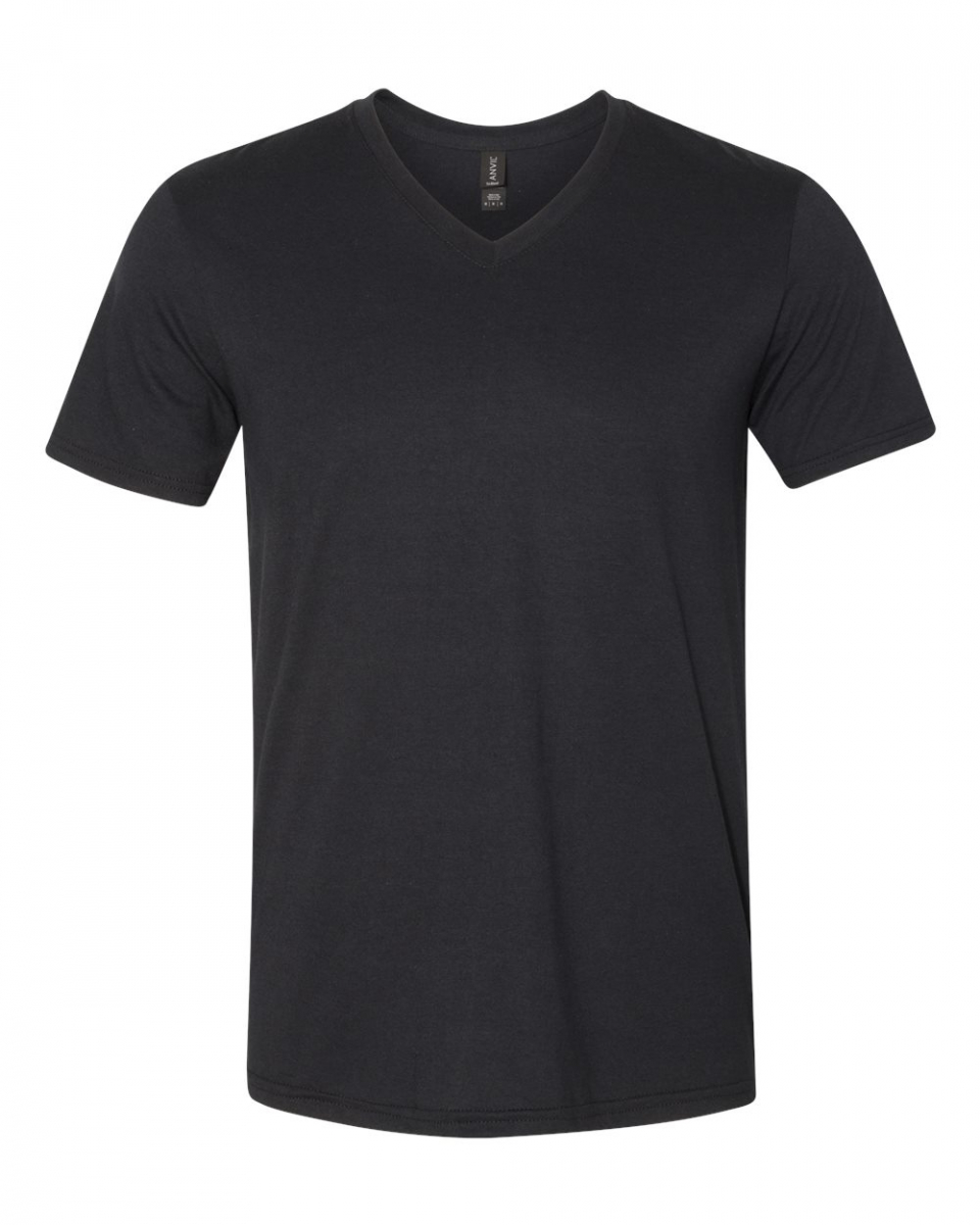 Picture of Anvil Triblend V-Neck Tee